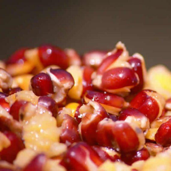 p-98-red-maize-1