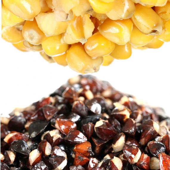 BUckwheat n Maize